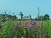 ChateauLocation copie